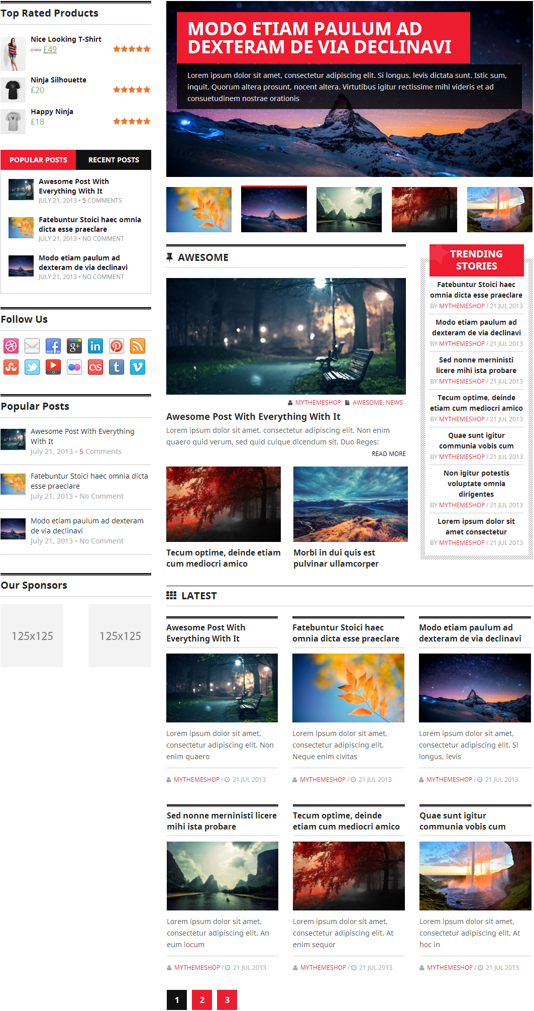 Homepage layout 4